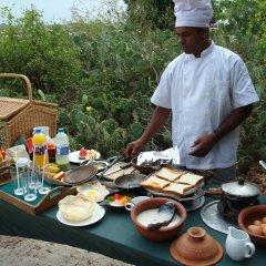 Отель Mahoora Tented Safari Camp - Kumana Шри-Ланка, Яла - отзывы, цены и фото номеров - забронировать отель Mahoora Tented Safari Camp - Kumana онлайн питание