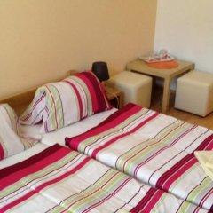 Отель Penzion u Vlčků Чехия, Хеб - отзывы, цены и фото номеров - забронировать отель Penzion u Vlčků онлайн фото 3