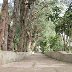 HYPOLINK Village in Kololi, Gambia from 71$, photos, reviews - zenhotels.com