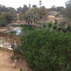 Отель Rodes Тунис, Мидун - отзывы, цены и фото номеров - забронировать отель Rodes онлайн фото 9