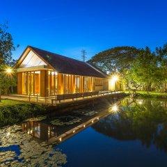 Отель Into The Forest Resort фото 4