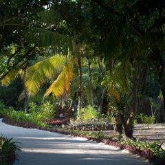 Отель Furaveri Island Resort & Spa фото 14
