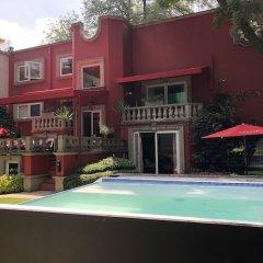 Отель Pug Seal B&B Coyoacan Мексика, Мехико - отзывы, цены и фото номеров - забронировать отель Pug Seal B&B Coyoacan онлайн фото 3