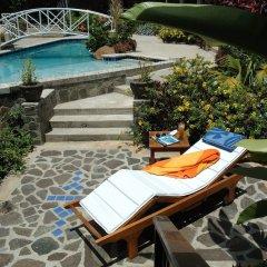 Отель Spring House Bequia бассейн фото 3