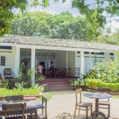 Отель Palm Villa фото 2