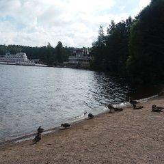 Отель Kiurun Villas Финляндия, Лаппеэнранта - 1 отзыв об отеле, цены и фото номеров - забронировать отель Kiurun Villas онлайн приотельная территория фото 2