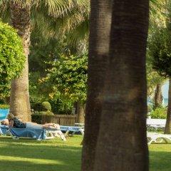 Отель Terrace Beach Resort бассейн фото 2