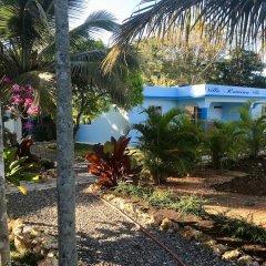 Отель Relais Villa Margarita Доминикана, Бока Чика - отзывы, цены и фото номеров - забронировать отель Relais Villa Margarita онлайн фото 23