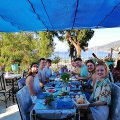 Turkuaz Pansiyon Турция, Калкан - отзывы, цены и фото номеров - забронировать отель Turkuaz Pansiyon онлайн помещение для мероприятий