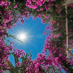 Отель Atlantis Beach Villa Греция, Остров Санторини - отзывы, цены и фото номеров - забронировать отель Atlantis Beach Villa онлайн фото 3
