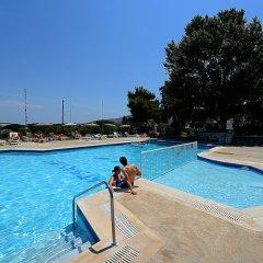 Отель Gelli Apartments Греция, Кос - отзывы, цены и фото номеров - забронировать отель Gelli Apartments онлайн бассейн фото 4