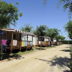 Отель Camping Del Mar Испания, Мальграт-де-Мар - отзывы, цены и фото номеров - забронировать отель Camping Del Mar онлайн фото 6