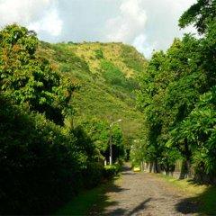 Pension Te Miti - Hostel Пунаауиа приотельная территория