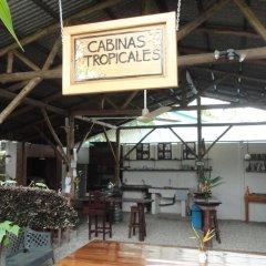 Отель Cabinas Tropicales Puerto Jimenez Ринкон гостиничный бар