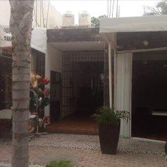 Отель Xahtal Alux Hostal Мексика, Плая-дель-Кармен - отзывы, цены и фото номеров - забронировать отель Xahtal Alux Hostal онлайн фото 6