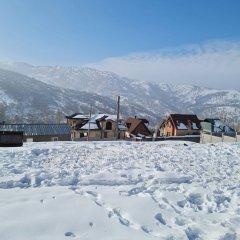 Отель Шале Balandda Chimgan Узбекистан, Газалкент - отзывы, цены и фото номеров - забронировать отель Шале Balandda Chimgan онлайн фото 7