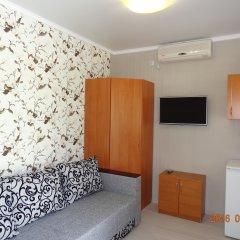 Гостевой Дом Золотая Рыбка Стандартный номер с различными типами кроватей фото 9