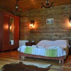 Гостевой дом Воробьиное гнездо комната для гостей фото 2