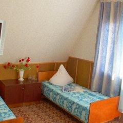 Гостиница Pansionat Kobzar Стандартный номер с различными типами кроватей фото 2