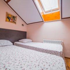 Гостиница Теремок Пролетарский Стандартный номер с разными типами кроватей фото 6