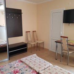 Гостиница Ludmila Plus 3* Стандартный номер с различными типами кроватей фото 5