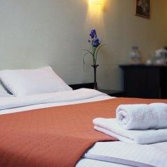 Гостиница Ирис 3* Стандартный номер разные типы кроватей фото 8