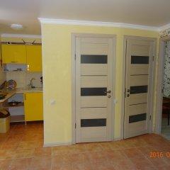 Гостевой Дом Золотая Рыбка Стандартный номер с различными типами кроватей фото 43