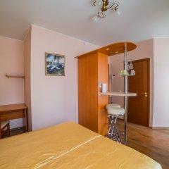 Гостиница Теремок Пролетарский Номер Премиум с разными типами кроватей фото 9