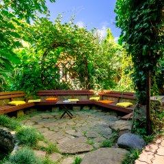 Гостиница Банановый рай бассейн фото 2