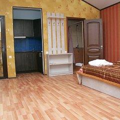 Гостиница Golden Leon Люкс с разными типами кроватей фото 5