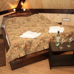 Гостиница Альпийский двор 3* Стандартный номер с различными типами кроватей фото 4