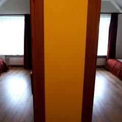 Гостевой Дом Вилла Северин Стандартный номер с разными типами кроватей фото 2