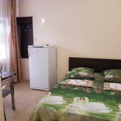 Гостиница Ludmila Plus 3* Стандартный номер с двуспальной кроватью фото 4