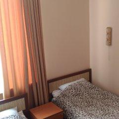 Мини-отель ТарЛеон 2* Стандартный номер разные типы кроватей фото 4