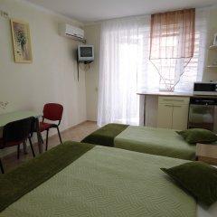 Мини-отель Вилла Блюз Стандартный номер с различными типами кроватей фото 3