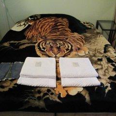 Mini-Hotel Alexandria Plus Стандартный номер с различными типами кроватей фото 10