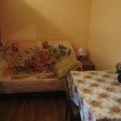 Mini-Hotel Alexandria Plus Номер категории Эконом с различными типами кроватей фото 24
