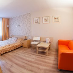 Гостиница Спутник 2* Стандартный номер разные типы кроватей фото 15