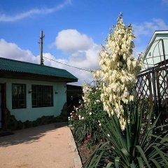 Гостиница Grifon Guest House 2* Люкс с различными типами кроватей фото 2