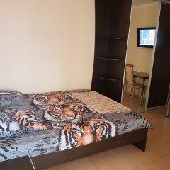 Гостиница Ludmila Plus 3* Стандартный номер с двуспальной кроватью фото 2