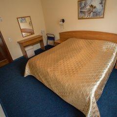 Гостиница Саяны 2* Стандартный номер разные типы кроватей фото 6