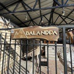 Отель Шале Balandda Chimgan Узбекистан, Газалкент - отзывы, цены и фото номеров - забронировать отель Шале Balandda Chimgan онлайн фото 8