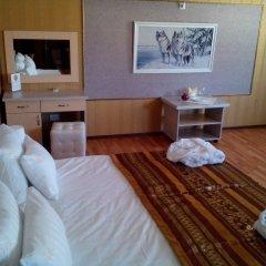 Гостиница Golden Leon комната для гостей фото 3