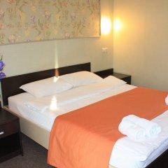 Гостиница Ирис 3* Стандартный номер разные типы кроватей фото 7