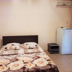 Гостиница Ludmila Plus 3* Стандартный номер с двуспальной кроватью фото 6