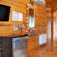 Гостевой дом Воробьиное гнездо удобства в номере фото 2
