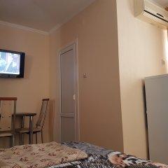 Гостиница Ludmila Plus 3* Стандартный номер с двуспальной кроватью фото 3