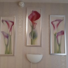 Мини-отель Адванс-Трио Студия фото 7