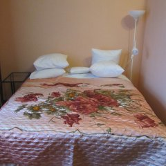 Mini-Hotel Alexandria Plus Номер категории Эконом с различными типами кроватей фото 23
