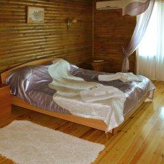 Гостевой дом Воробьиное гнездо Президентский люкс с различными типами кроватей фото 9